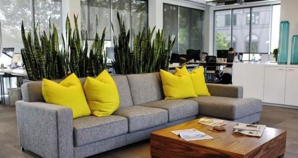 Tranh gạo trang trí phòng khách