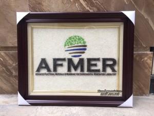 Logo AFMER