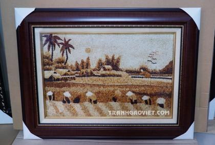 Tranh gạo mùa gặt